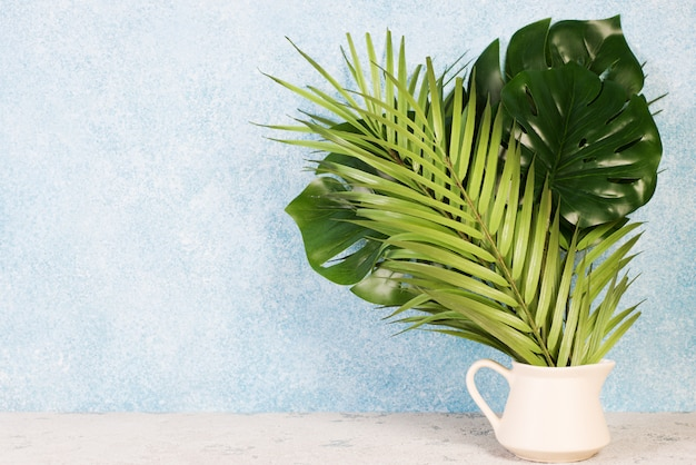 Sfondo creativo di foglie tropicali. trandi foglie tropicali su sfondo blu