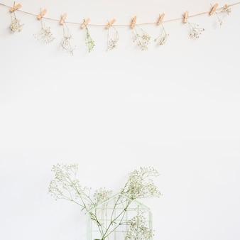 Sfondo decorativo con fiori di campo