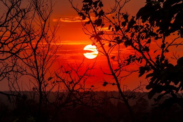 Sfondo del cielo al tramonto