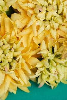 Sfondo di bellissimi fiori gialli
