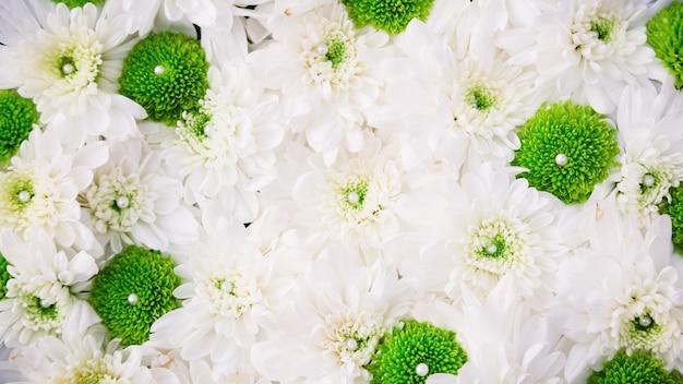 Sfondo di bellissimi fiori per la scena del matrimonio