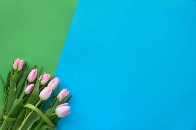 Sfondo di carta blu e verde primavera con tulipani rosa