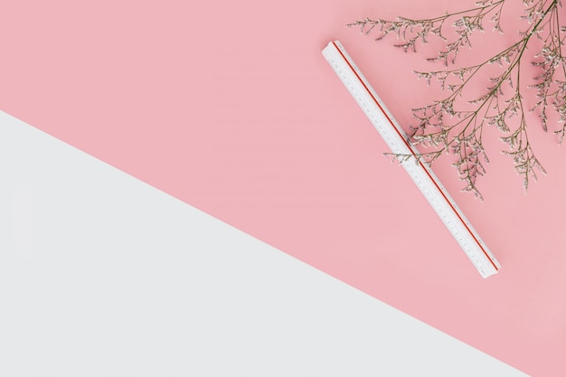 Sfondo di colore rosa e bianco con rami di fiori e righello di scala sul lato destro.