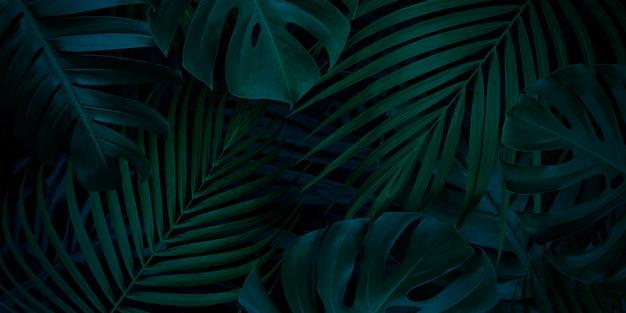 Sfondo di foglie tropicali con spazio di copia