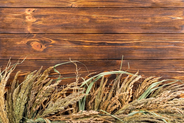 Sfondo di grano vista dall'alto con spazio di copia