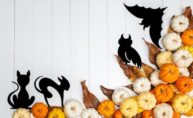 Sfondo di halloween con zucche, gatti, un gufo e un pipistrello su bianco