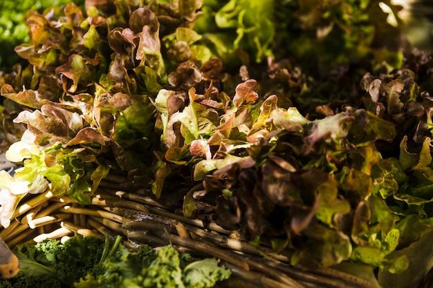Sfondo di lattuga cruda tradizionale fresca