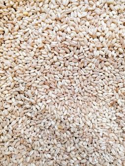 Sfondo di riso bianco