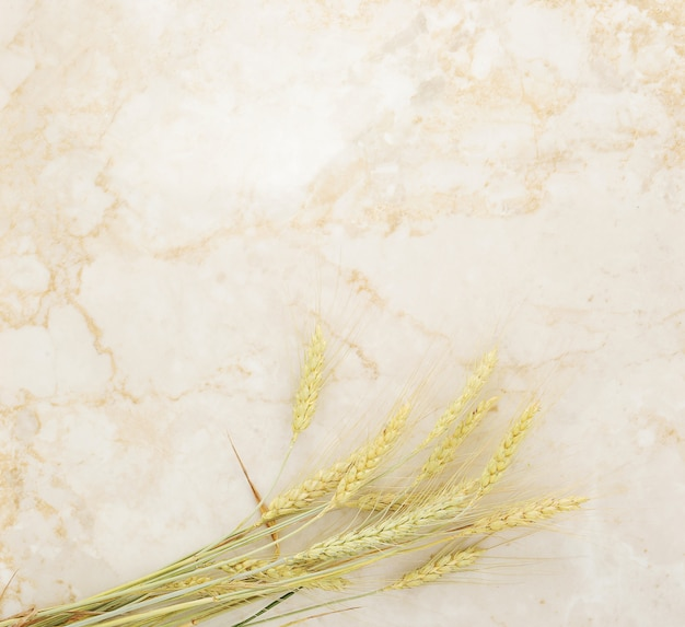 Sfondo di spighe di grano su marmo