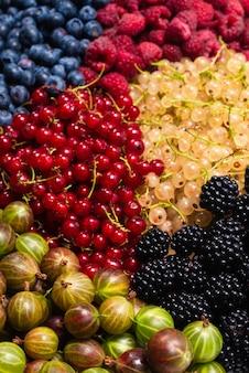 Sfondo di uva spina, mirtilli, gelso, lamponi, ribes bianco e rosso.