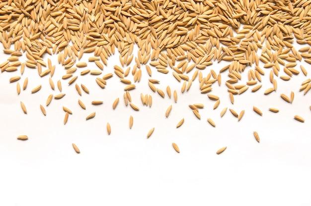Sfondo e carta da parati dal mucchio di risone e semi di riso.