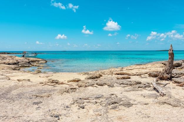 Sfondo estate con spiaggia tropicale a elafonisi grecia