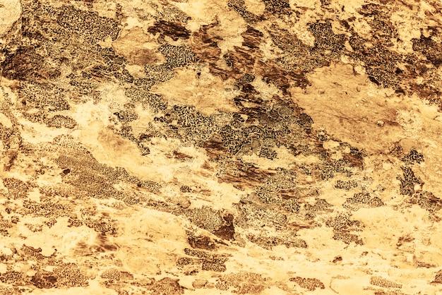 Sfondo giallo vintage. parete ruvida dipinta di color oro aspen. piano imperfetto di colore dorato. sfondo sfumato decorativo vecchio irregolare di tinta gialla. texture di tonalità oro. superficie pietrosa ornamentale