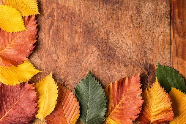 Sfondo grunge con foglie di autunno