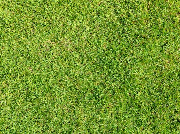 Sfondo naturale dell'erba artificiale verde