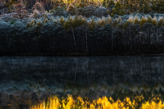 Sfondo naturale nella stagione autunnale