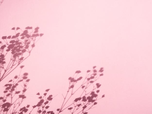 Sfondo rosa con le ombre del ramo