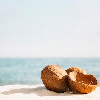 Sfondo spiaggia con noci di cocco