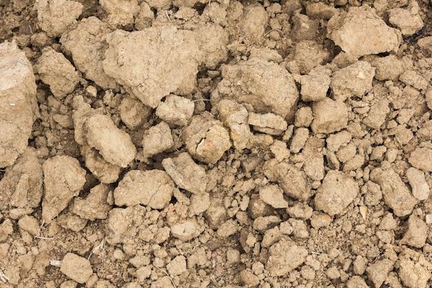 Sfondo trama del suolo