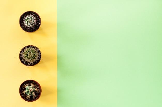 Sfondo verde con spazio di copia e striscia gialla con tre cactus.