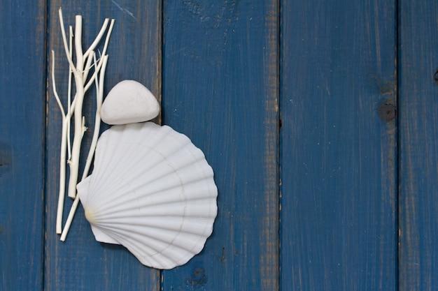 Shell su superficie di legno blu