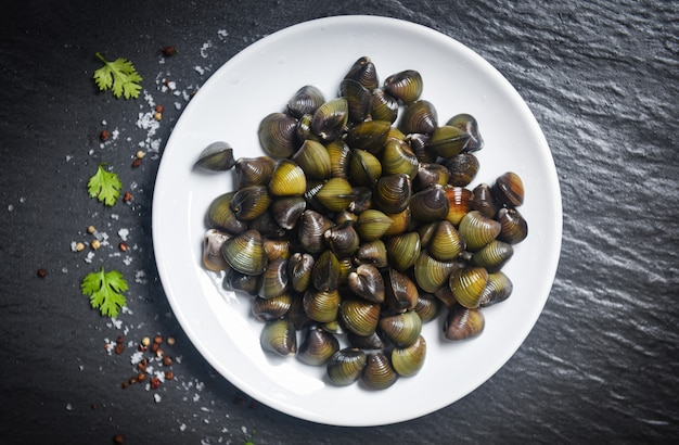 Shijimi molluschi d'acqua dolce bivalve come gusci di vongole sul piatto bianco con erbe e spezie su oscurità
