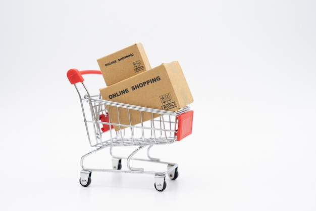 Shopping online con un servizio di consegna di shopping cart e shopping bags