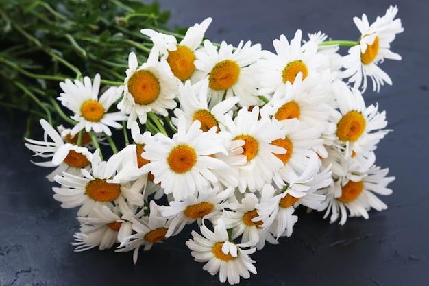Si trova un bouquet di primo piano di camomiles