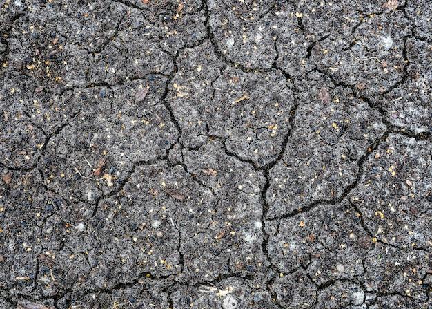 Siccità, terra nera secca, screpolata