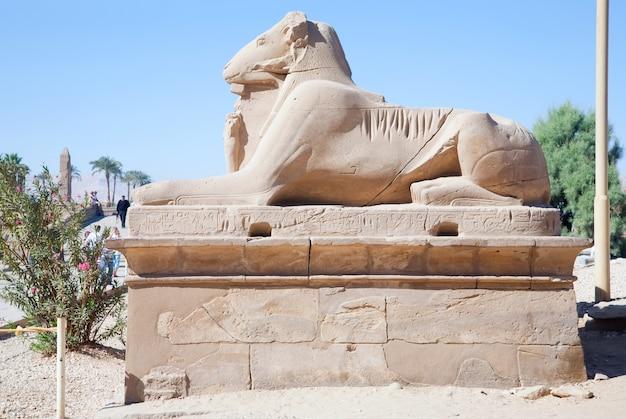 Sifone a testa di ram nel tempio di karnak