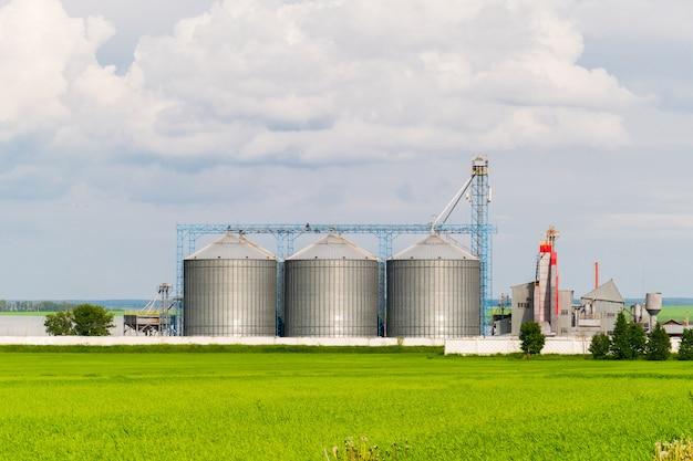 Silo agricolo, piantagioni di girasole in primo piano - esterno dell'edificio, stoccaggio e asciugatura di cereali, grano, mais, soia, girasole contro il cielo blu con nuvole bianche