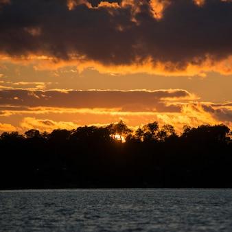 Siluetta degli alberi alla riva del lago durante il tramonto, il lago of the woods, ontario, canada