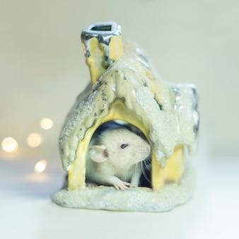 Simbolo del nuovo anno 2020. mouse topo bianco o metallo