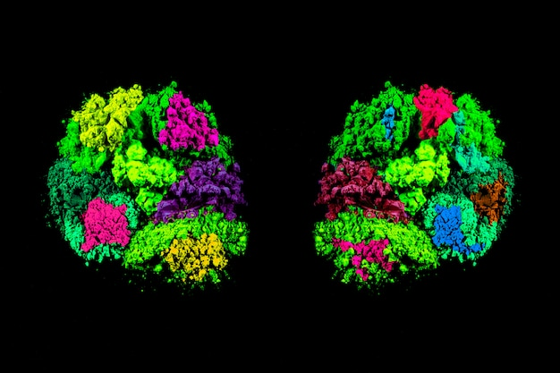 Simmetria di colori di polvere colorata holi su sfondo nero