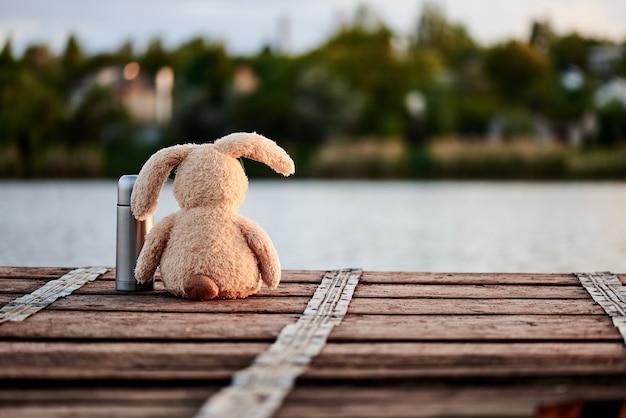 Simpatico coniglio morbido con un thermos sul molo vicino al lago alla luce del sole.