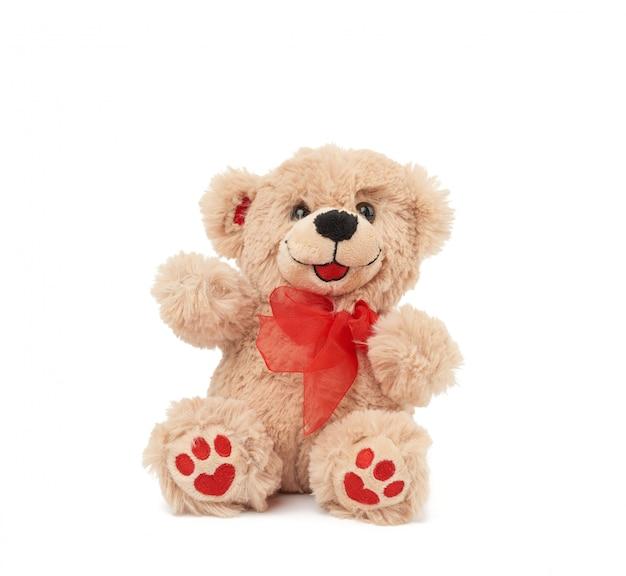 Simpatico orsacchiotto marrone