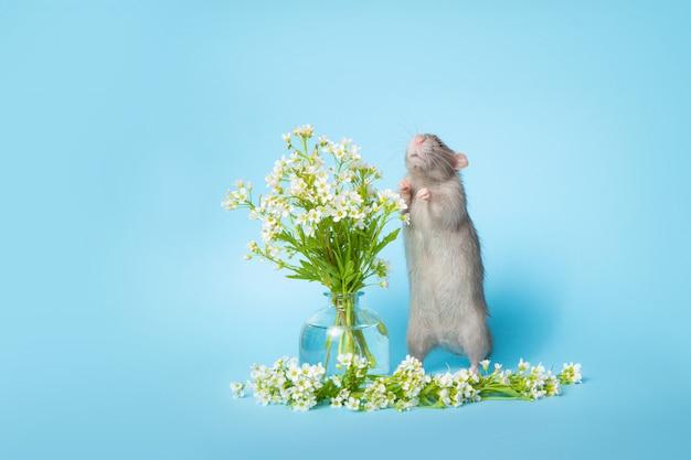 Simpatico ratto con fiori