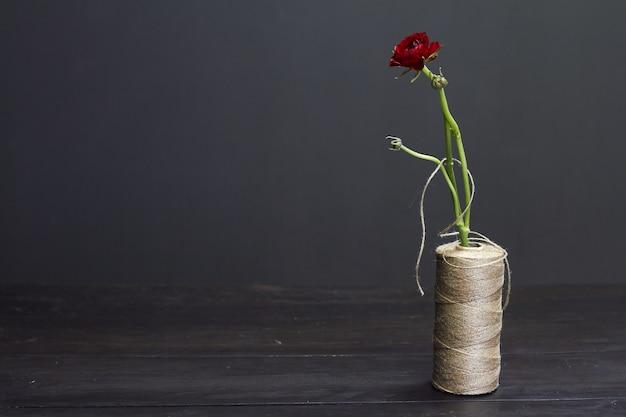 Singolo ranuncolo rosso in un vaso da una bobina di fili grezzi su oscurità