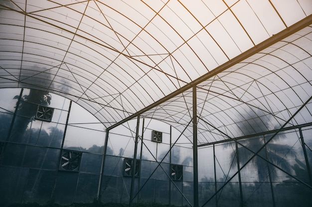 Sistema agricolo chiuso moderno per piante in crescita con tecnologia e innovazione