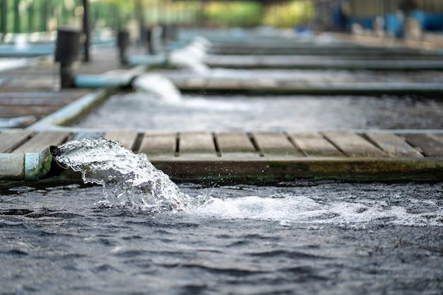 Sistema di trattamento del flusso d'acqua dal tubo della pompa dell'acqua. l'acqua è stata scaricata da un tubo in pvc. trattamento industriale delle acque reflue.