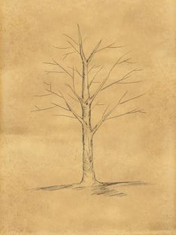 Sketch di albero senza foglie su carta