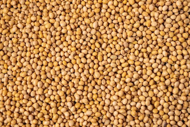 Soia, fagioli di soia secchi, semi organici del grano di salute, struttura e fondo.