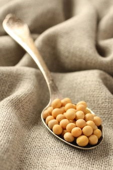 Soia in cucchiaio di metallo su priorità bassa della tela di sacco