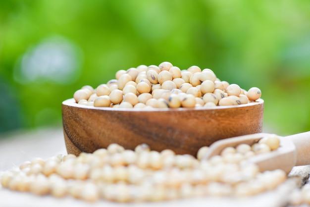 Soia, soia nei prodotti agricoli di una ciotola di legno / fagioli di soia asciutti con il fondo della natura