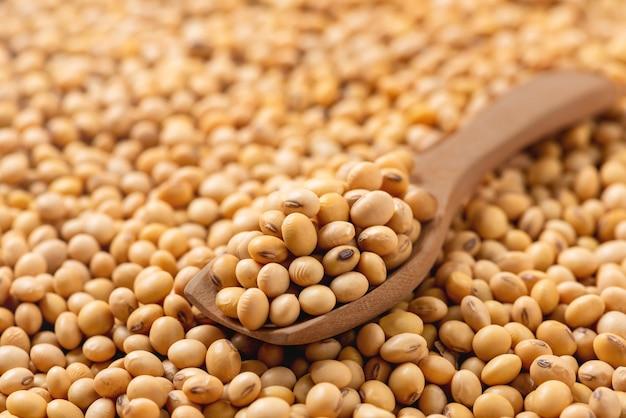 Soia sul cucchiaio di legno, fagioli di soia secchi, semi organici del grano di salute, struttura e fondo.