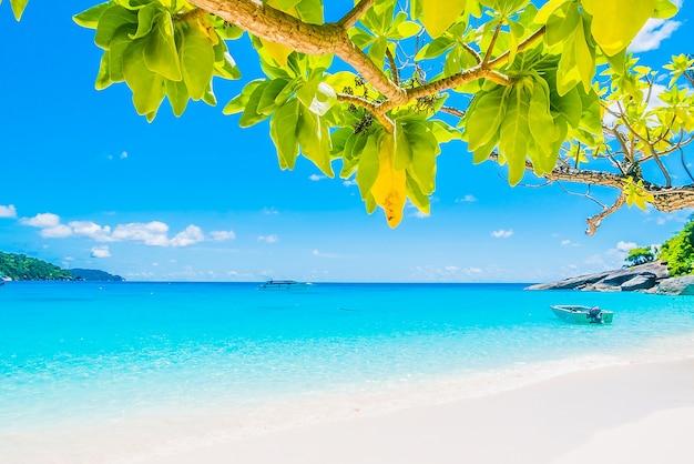 Sole cielo isola tramonto tailandia
