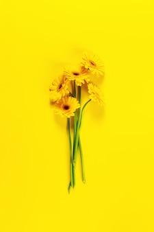 Sole impianto di bellezza floreale sopra