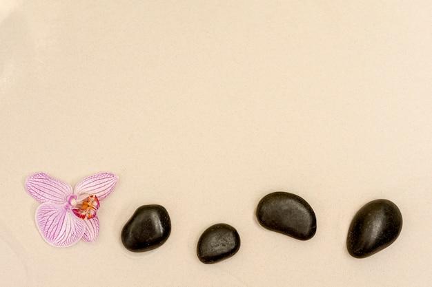 Sopra la cornice con fiori e pietre