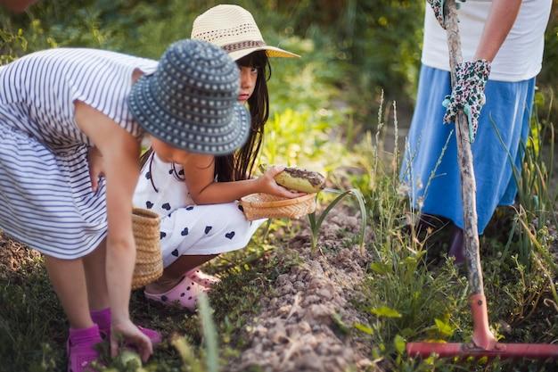 Sorelle che tengono la zucca raccolta con la loro madre che sta nel campo