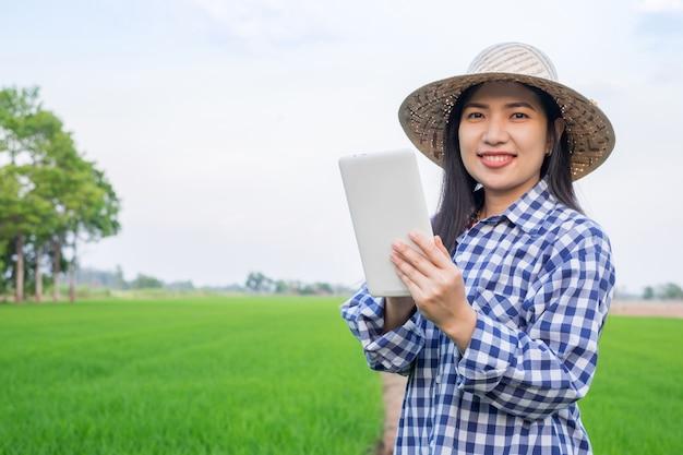 Sorriso asiatico della ragazza dell'agricoltore e usando il cellulare della compressa all'azienda agricola verde del riso